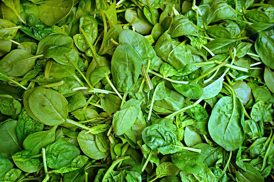 energia verda espinacs