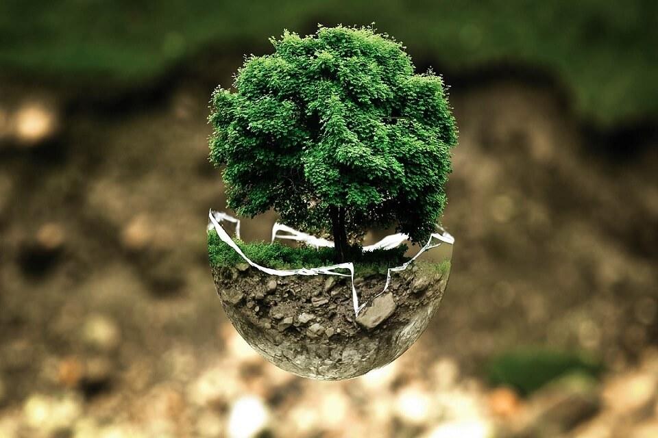 El Día Mundial de la Eficiencia Energética
