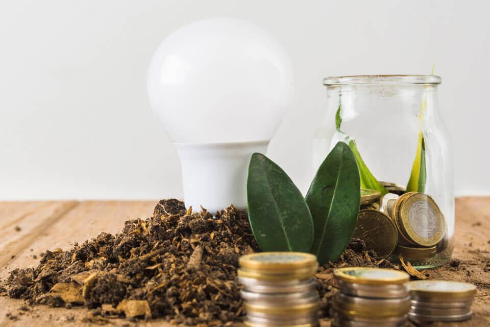 Celebra el Día Mundial del Ahorro Energético ahorrando