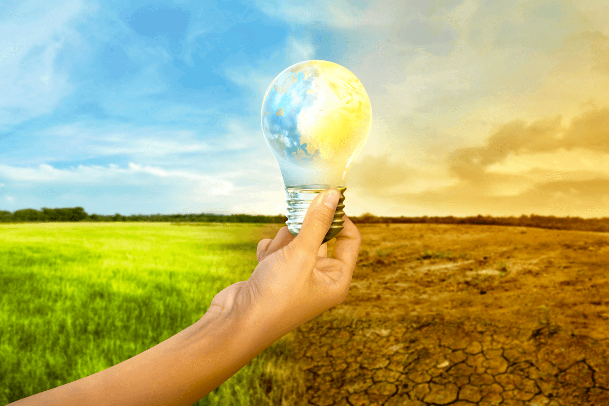 dia mundial del clima