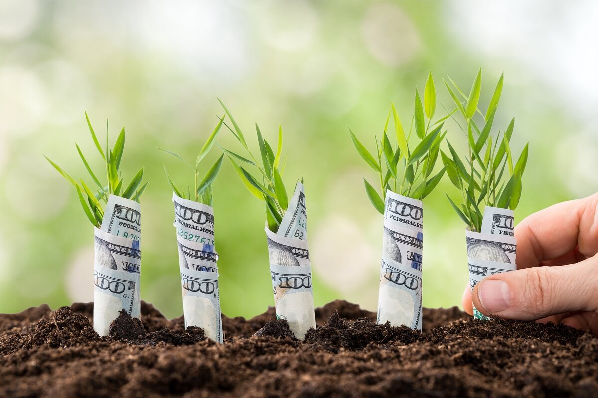 ¿Qué son los bonos verdes soberanos del Tesoro Público?